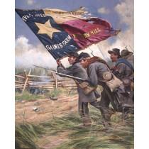 Color Bearer 1st Texas Regiment