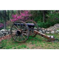 Cannon & Dogwood, Gettysburg